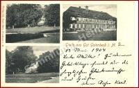 Neubrandenburg Fern_13