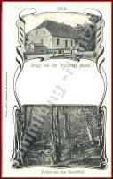 17. Neubrandenburg Fern